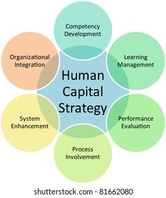 Human capital business diagram management strategy concept chart vector illustration