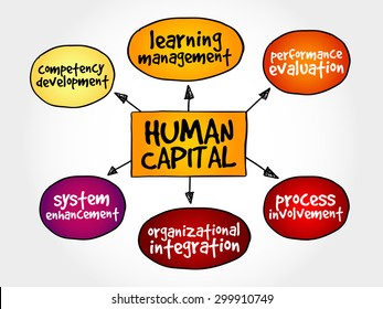 Human capital mind map, business management strategy concept