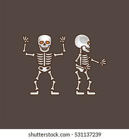 Human cartoonish skeleton - two sides. Game character design. Vector illustration EPS10.