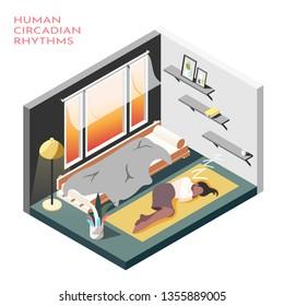 Human circadian rhythms isometric composition with room where business woman sleep on the floor vector illustration