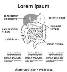 Gastrointestinal tract images stock photos vectors shutterstock the human digestive system illustration of splitting pills ccuart Choice Image
