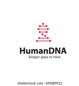 HUMAN DNA CREATIVE LOGO VECTOR TEMPLATE