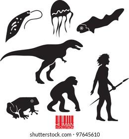 Human evolution. Animal evolution vector set.