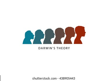 Human evolution. Darwin's theory. Changes in the head from Australopithecus to Homo sapiens. Vector illustration