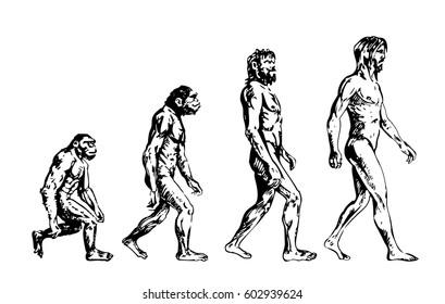 Human evolution, hand drawing