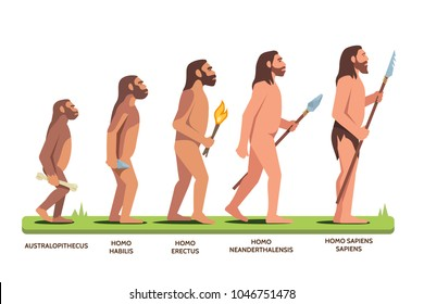 Human evolution stages: Australopithecus, Homo Habilis, Erectus, Neanderthalensis, Homo Sapiens Sapiens. Darwin evolution theory visual aid. Man progression stages. Flat vector character illustration