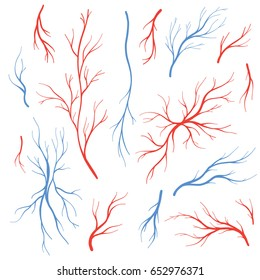 Human eye veins, arteries, red blood vessels. Blood-vascular system vector set isolated on white background. Tattoo sticker collection.