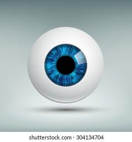Human eyeball. Blue iris.
