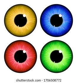 Human eyeball iris pupil set isolated on white background. Vector design eps10.