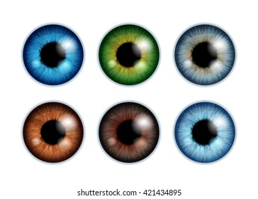 Human eyeballs iris pupils set isolated on white background - blue gray brown green colors. Colorful eyes realistic vector illustration.