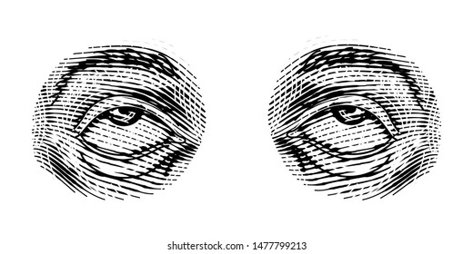 Human Eyes look up in vintage style. Female look and eyebrows. Visual System, Sensory Organ Components. Healthy exercise. Hand drawn engraved sketch subject physiology or anatomy.