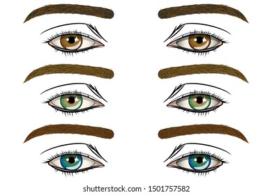 Human eyes. Vector image isolated on a white background.