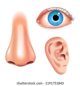 Human face parts 3 sense organs icons square collection of eye nose and ear realistic vector illustration