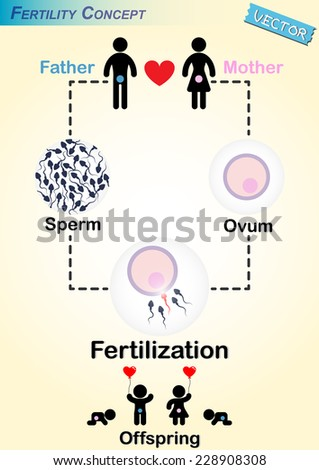 Men produce sperm women produce