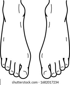 Human foots. Vector outline icon.