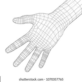 Human hand wire-frame. Vector illustration rendering of 3d