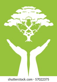 human hands take care of tree, symbol of nature