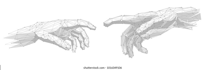 Human hands touching with fingers on white background. Abstract lines and points.