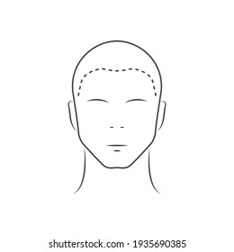 Human head icon. Head guidelines for barbershop, haircut salon. Lined male head in front view isolated on white background. Vector illustration