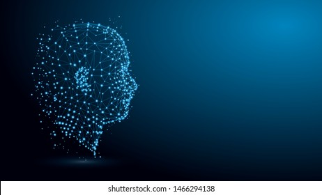 Human head with network plexus structure