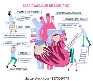 Human health. Human disease.Prevention, treatment and diagnosis of heart diseases, cardiovascular diseases. Doctor, nurse and cardiologist study heart disease. Vector illustration in comic style