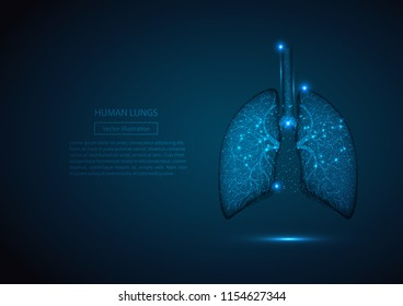 Human healthy lungs. Internal digestion organ. Low poly connected dots triangle future technology design background vector medicine illustration.