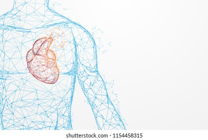 Human heart anatomy form lines and triangles, point connecting network on blue background. Illustration vector
