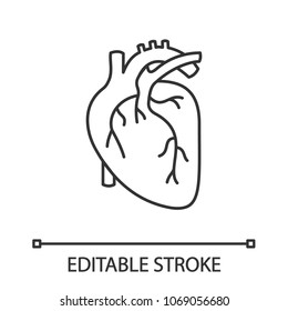 Human heart anatomy linear icon. Thin line illustration. Contour symbol. Vector isolated outline drawing. Editable stroke