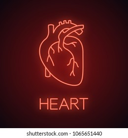 Human heart anatomy neon light icon. Glowing sign. Vector isolated illustration