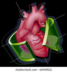 Human Heart with Axes and Green Transparent Arrow around it on Black Background. Vector Illustration