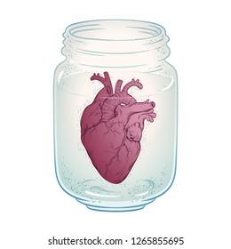 Human heart in glass jar isolated. Sticker, print or blackwork tattoo hand drawn vector illustration.