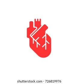 Human heart icon. Vector isolated flat heart illustration.
