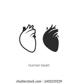 human heart icon vector symbol sign