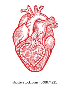 The human heart with a mechanical heart inside in the graphic style