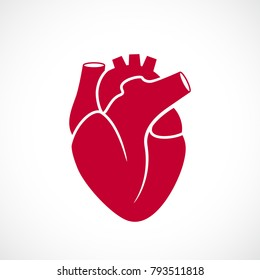 Human heart medical vector illustration isolated on white background