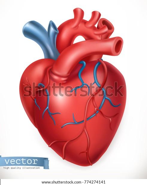 Ludzkie serce. Medycyna, narządy wewnętrzne. Ikona wektorowa 3d.