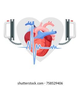 Human heart, modern defibrillator and piece of cordiagram