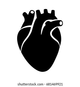 Human heart organ with aorta and arteries flat vector icon for medical health apps and websites