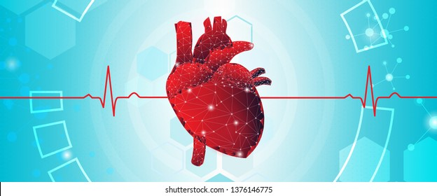 Human heart organ, poly geometric model. Cardiology system medicine treatment. Future science technology polygonal geometric blue-red. A concept hospital for wallpaper and web. Vector illustration