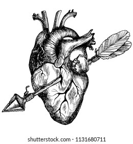 Human heart pierced with an arrow boho. Hand drawn vector symbolic illustration for your poetic design.