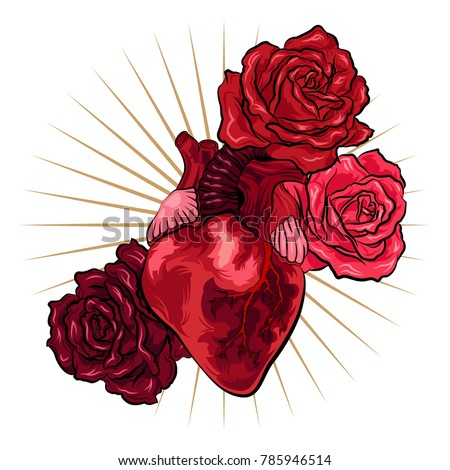 Human Heart Red Roses Tattoo Style Stock Vector Royalty Free