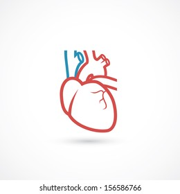 Human heart symbol - vector illustration