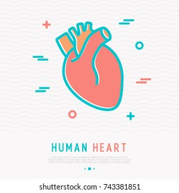 Human heart thin line icon. Simple vector illustration of human internal organ.
