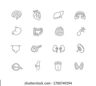 human internal organ icon set. line design