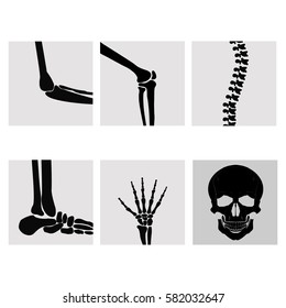 Human joints, knee, elbow, ankle, wrist hand . Medical orthopedic of set. Anatomy orthopedic illustration icon leg and bone skull spine