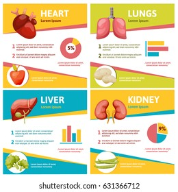 Human liver anatomy poster set with infographic. Heart, lungs, liver and kidney poster