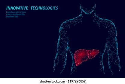 Human Liver hepatitis treatment medicine business concept. Disease prevention health care medical centre doctor online diagnosis low poly 3D render poligonal point line vector illustration