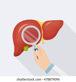 Human liver with magnifying glass isolated on light background. Checkup of health. Medical inspect, Test. Doctor examines internal organ. Healthcare. Flat style. Vector illustration.