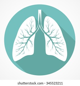 Human Lung anatomy flat icon with long shadow.  Vector image simple picture