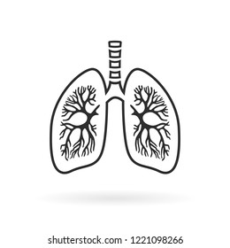 Human lungs anatomy line icon illustration isolated on white background